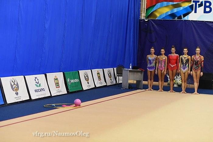 Нижегородские спортсменки вошли вчисло призеров чемпионата Российской Федерации похудожественной гимнастике
